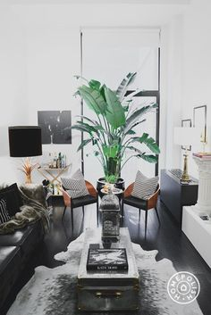 The $5k Living Room - Though the living room isn't huge, the black and white symmetry in the space makes it feel comfortable, uncluttered and chic. - @Homepolish New York City