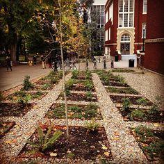 Carol Daemon: Algumas hortas urbanas pelo mundo