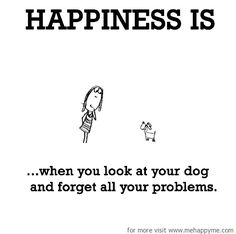 Happiness is when you look at your dog and forget all your problems.