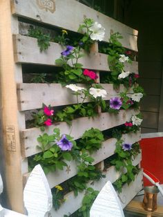 Vertical gardens are all the rage. This one, created out of an old wooden pallet, is wall and planter in one. I don't love these particular plants — I would go with herbs — but it's still a great idea.