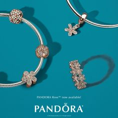 We are excited to announce PANDORA Rose™ is now available at Perrywinkle's! The innovative metal blend has a distinctive blush color that accents every outfit. #DOPANDORA