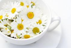 Salvia, Diy Beauty, Make It Simple, Tea Cups, Daisy, Cooking, Tableware, Kitchen, Recipes