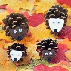 Pinecone Hedgehogs