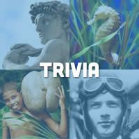 Sharing trivia and tidbits of knowledge in a social setting is a fun and engaging activity. Trivia exercises can also improve memory and cognition.
