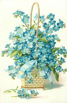 forget-me-nots, in square wicker basket, blue ribbon, vintage postcard Art Floral, Floral Vintage, Vintage Flowers, Vintage Prints, Blue Flowers, Vintage Greeting Cards, Vintage Ephemera, Vintage Postcards, Images Vintage