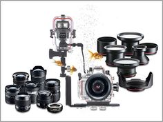 Olympus expands underwater range : Digital Photography Review