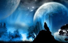 Diy Diamond Painting The Wolf Howl In Moonlight Full Diamond Embroidery European Style Decorate Living Room A Good Family Gift Howl At The Moon, Wolf Wallpaper, Wolf Spirit, Wolf Howling, Lone Wolf, Backgrounds Free, Live Wallpapers, Iphone Wallpapers, Night Skies