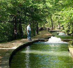 Maramec Spring Park Info - St. James, MO