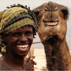 Clive the Magic Camel likes this. As Clive is a Magic Camel and what he wishes for comes true, perhaps in his next book Clive thinks he ought to wish for his teeth to be human teeth, and then he can smile like this camel.