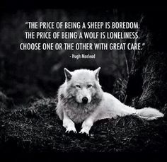 I chose the wolf