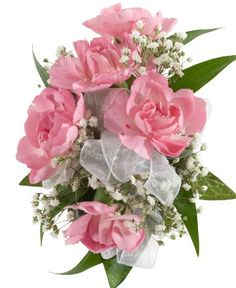 MINI CARNATION CORSAGE, PINK - A corsage with five pink mini carnations and babies breath. Designed as a wrist corsage, but can be converted to a pin on corsage with included pins. Item #4400.