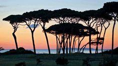 Golfo di Baratti Holiday in Tuscany? www.dolcevita.li.it