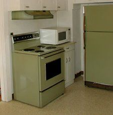 Avocado Green appliances....  avocado green and harvest gold were the colors of the 70's
