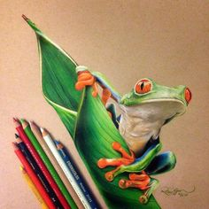 """""""Hop"""" colored pencil drawing by _____ Colored Pencil Artwork, Pencil Art Drawings, Color Pencil Art, Coloured Pencils, Animal Drawings, Art Sketches, Sweet Drawings, Realistic Drawings, Colorful Drawings"""