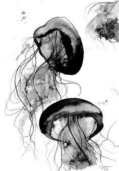 Black and White Jellyfish watercolor study, by Jessica Durrant : Schwarz und weiß-Qualle Aquarell Studie von Jessica Durrant Jellyfish Art, Watercolor Jellyfish, Jellyfish Quotes, Jellyfish Sting, Jellyfish Aquarium, Jellyfish Tattoo, Watercolor Ocean, Aquarium Fish, Painting Edges