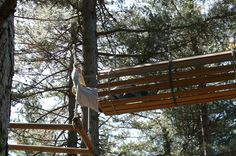 Parco Avventura in #Sila