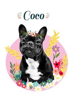 Fun Illustrations and heartwarming gifts by LadyFatCat Fun Illustration, Illustrations, Dog Portraits, French Bulldog, Etsy Seller, Cats, Creative, Animals, Bulldog Frances