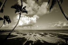 Ke lki Beach     |