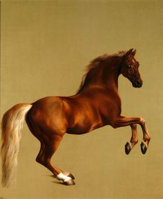 Whistlejacket George Stubbs