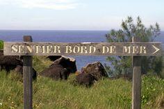 Randonnée sentier du littoral Terre Rouge Saint-Pierre La Réunion