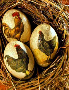Pretty Rooster Egg Art!