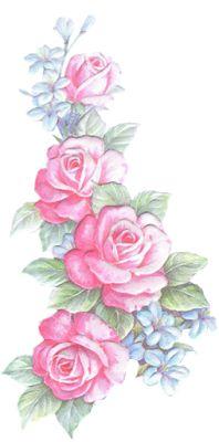 flores-desenho de rosas