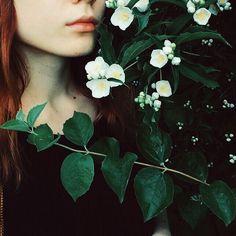 Запах жасмина ����#jasmine#flower#flowers#flowerstagram#leaves#lips#instamood#instaphoto#iphonephoto#iphonephotography#nature#instaflower#flowergirl#flowerporn misstagram.com/...