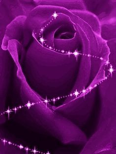 Purple things on Pinterest