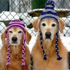 Don't forget to wear a hat. Baby it's cold outside!