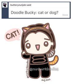 Ask Bucky