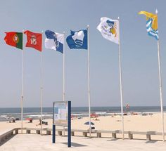 SPORTS And More: #Praia da #Torreira #MonteBranco Blue flag #Aveiro...
