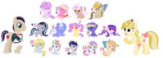 Sweet Foal Adopts   ADOPTED: 1, 2, 4, 5, 6, 7, 8, 9, 11, 12, 13, 14