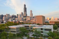 For the fourth consecutive year, UIC is one of four U.S. universities listed in the top 20 of an international ranking of the top 100 universities in the world that were founded less than 50 years ago.  Only seven U.S. universities are included on the entire list.  - See more at: http://news.uic.edu/uic-in-top-20-on-list-of-worlds-100-young-universities#sthash.GJjjM5Ra.teZ1Ftfj.dpuf