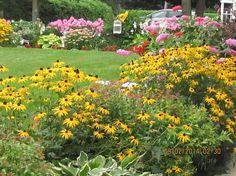 gardening flowers backyard full bloom summer canada, flowers, gardening