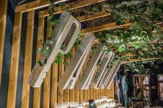 Un bar lleno de vegetación. Un patio que invita a quedarse horas. Una barra protagonista.  Thames 1472  Buenos Aires