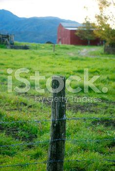 Rural New Zealand Scene at Dusk royalty-free stock photo