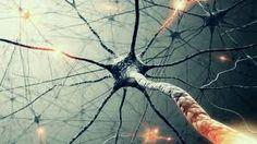 Resultado de imagen para red neuronal wallpaper