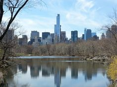 Central Park. NYC. April 2015.