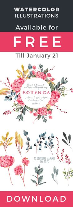 FREE botanical floral watercolor illustrations available till January 21st. #watercolor #botanical #floral #illustrations #wattercolorillustration #watercolorillustrations