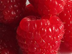 Aesthetic Food, Aesthetic Photo, Aesthetic Pictures, Nature Aesthetic, Food N, Food And Drink, Love Food, Raspberry, Organic