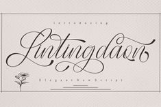 Lintingdaon is an exceptional script font that has a host of beautiful swashes with a romantic and soft rhythm that... Hand Lettering Fonts, Handwritten Letters, Handwriting Fonts, Script Fonts, Typography Fonts, Calligraphy Fonts, New Free Fonts, New Fonts, Cute Fonts