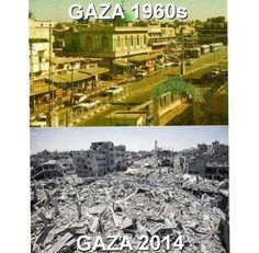 """""""I live in a city where thousands of tons of explosives have fallen and are still exporting roses to the world . It is called Here is 🇵🇸Mustafa D. Injustices In The World, Then And Now Pictures, Gaza Strip, Apartheid, Christian Devotions, Historical Pictures, Old Photos, City Photo, Image"""
