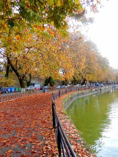 Lake Pamvotida in Ioannina, Epirus, Greece 🇬🇷️ Beautiful Places To Visit, Places To See, Puerto Rico, Santorini Villas, Seasons In The Sun, Myconos, Greek Flowers, Greece Holiday, Autumn Scenery