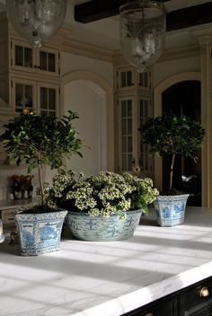 blue and white Chinese porcelain planters