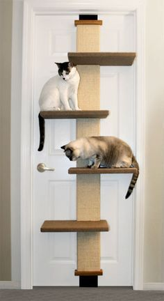 diy scratching post for cats - Buscar con Google