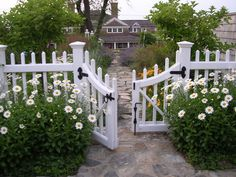 Need to build a front and side yard fence: something like this would be nice. Take out the drive way and make it all grass