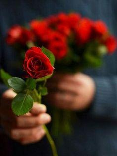 Дарите любимым цветы