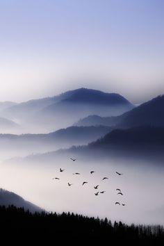 My guess...Smokey Mountains, North Carolina or Tennessee -  Kevin Lu - Google+