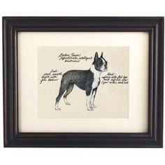 boston terrier dog print.  ballard designs