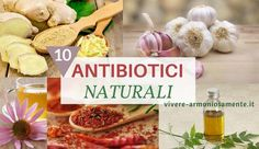 Antibiotici naturali efficaci: argento colloidale, aglio, neem, miele di manuka, zenzero, echinacea, tea tree oil, semi di pompelmo, idraste, peperoncino...